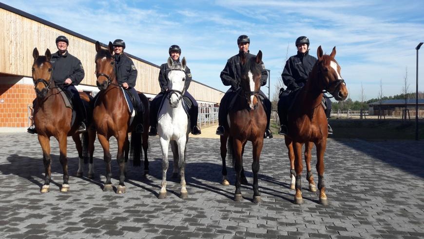Reiterstaffel nach Stahnsdorf verlegt
