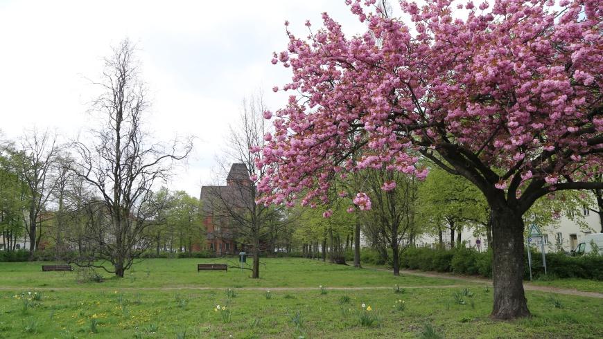 Grazer Platz mit Nathanael-Kirche