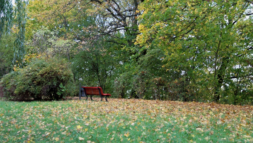 Herbstbild 2017 am Wulfila-Ufer