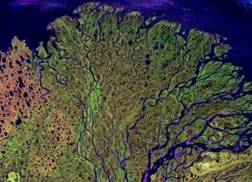 Satellitenbild: Flußdelta
