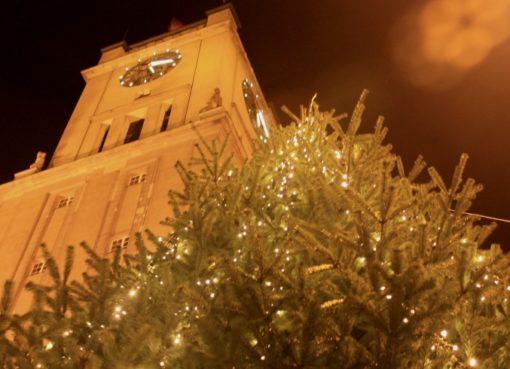 Weihnachtsbaum vor dem Rathaus Schöneberg