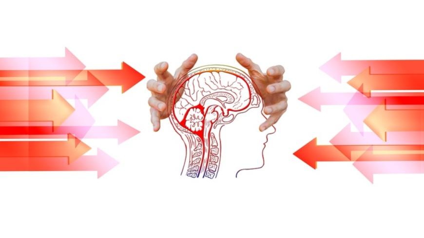 Mobbing wirkt auf das Gehirn