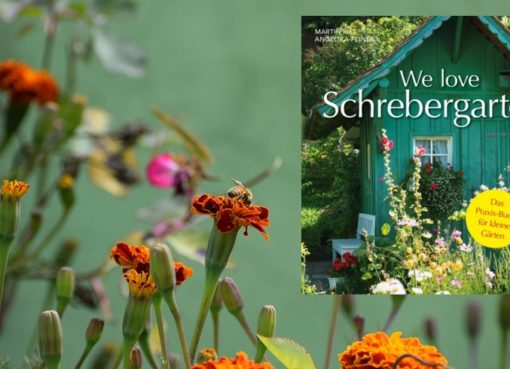 """We love Schrebergarten!"""