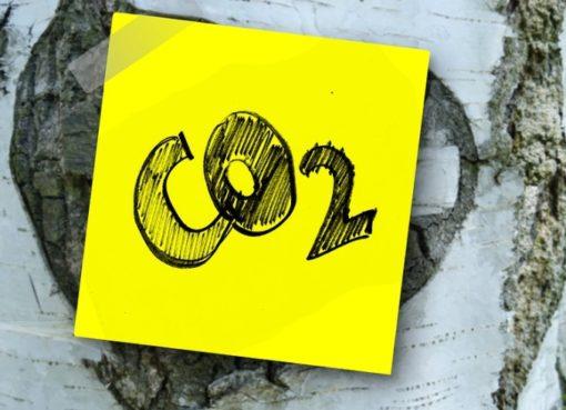 Welche CO2-Steuer kommt?