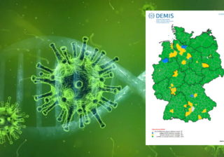 Visualisierung des Coronavirus